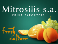 Mitrosilis_02