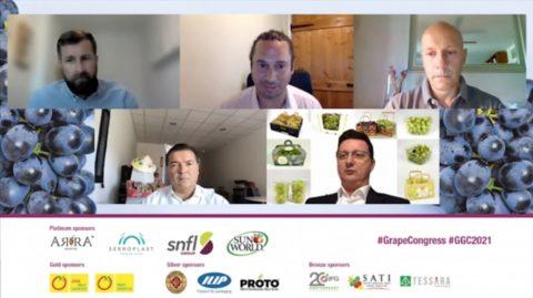 EUROFRUIT: The grape packaging debate